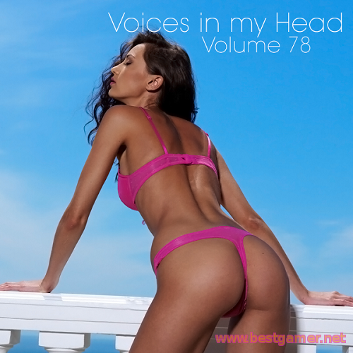 VA - Voices in my Head Volume 78