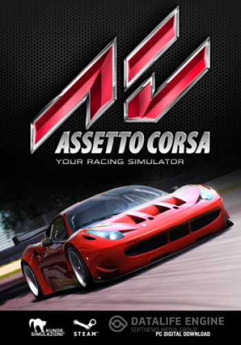 Assetto Corsa [2014, RUS(MULTI)/ENG, Repack] от R.G. Origami